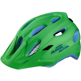 Alpina Carapax Jr. Helmet Barn green-blue